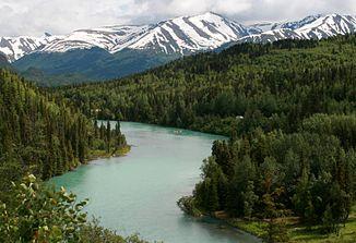 Alaska Journal, seeking salmon and more. Part 3