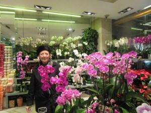 Orchids in Paris