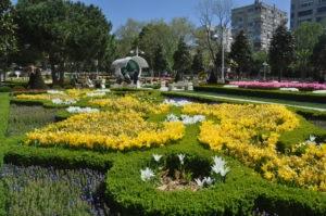 Istanbul Tulip Festival.