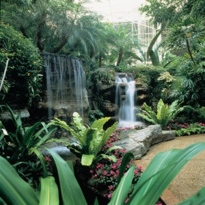 Cascade Atrium at Gaylord Opryland Resort Nashville