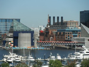 Federal Hill Baltimore-AVM 031