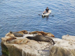 Kayaking at La Jolla