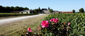 wines from Chateau Peyrabon