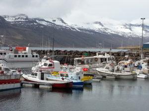The harbor at Stodvarfjordur