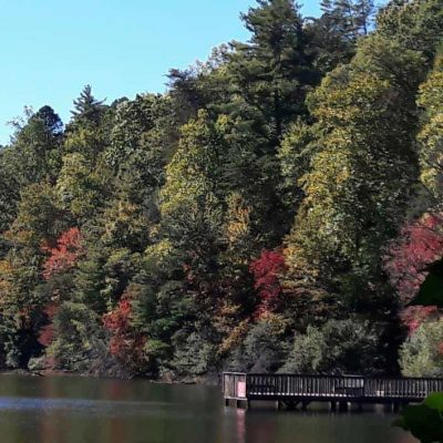 Stay at the Unicoi state Park to enjoy adventure, the outdoors and nearby small towns.